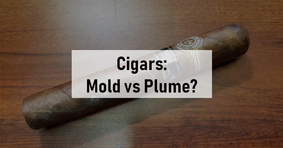 cigar mold vs plume